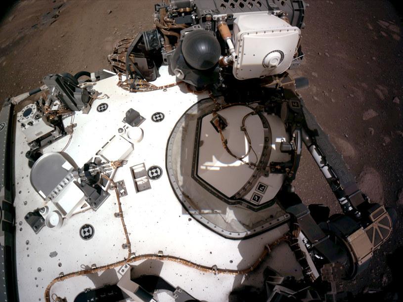"""Łazik Perseverance na Marsie - jedno ze zdjęć, które swoją """"premierę"""" miały 22 lutego /NASA"""
