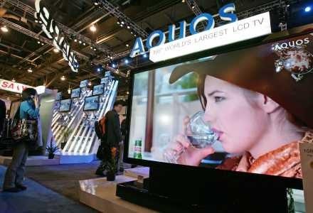 LCD obecnie robi furorę /AFP