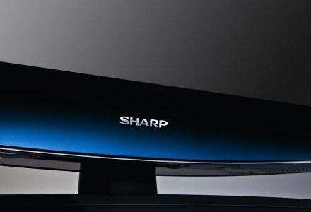 LCD Sharp AQUOS DH77E /materiały prasowe
