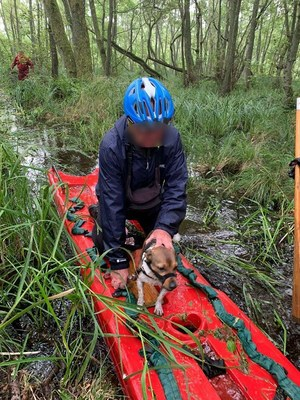 Łeba: Niemiec ugrzązł w bagnie na terenie parku narodowego