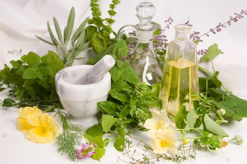 leczenie ziołami /© Photogenica