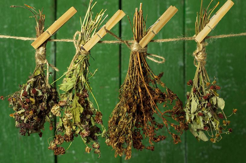 Lecznicze zioła zbieraj w słoneczny dzień, gdy zniknie już poranna rosa /123RF/PICSEL