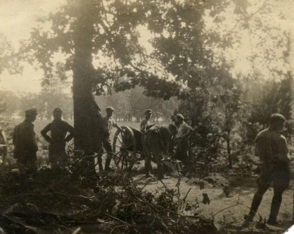 Artyleria legionowa na Wołyniu  (1916)