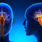 Lek na raka umożliwia regenerację rdzenia kręgowego