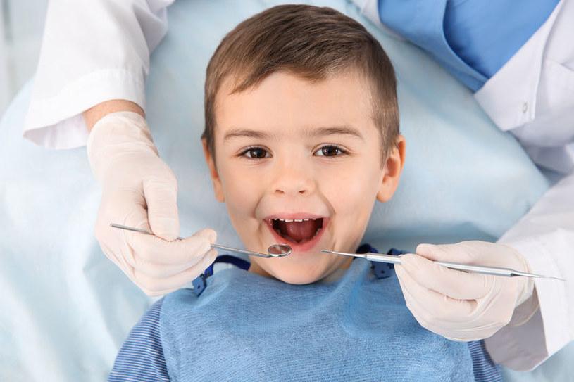Lekarz powinien zacząć borowanie od najmniejszych ubytków, aby nie przestraszyć dziecka /123RF/PICSEL
