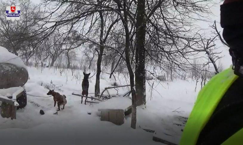 Lekarz weterynarii zdecydował o odebraniu właścicielowi 18 psów /Policja