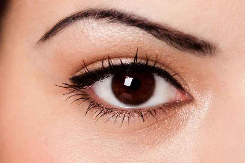Lekka i wyrazista kreska sprawdzi się, jeśli nosisz okulary /123RF/PICSEL
