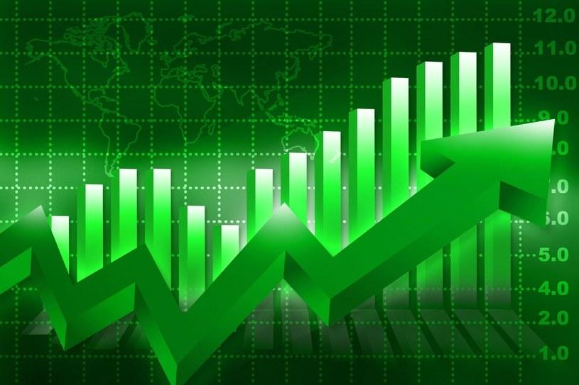 Lekki wzrost głównych indeksów, na rynku nadal dobre nastroje /123RF/PICSEL
