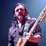Lemmy w raju głupców