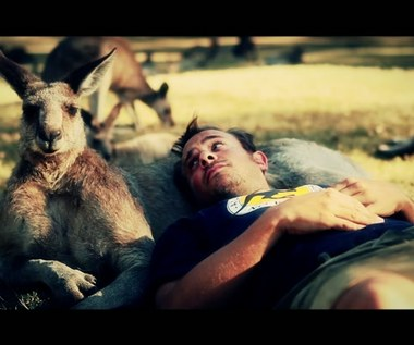 Leo Aberer - Kangaroo