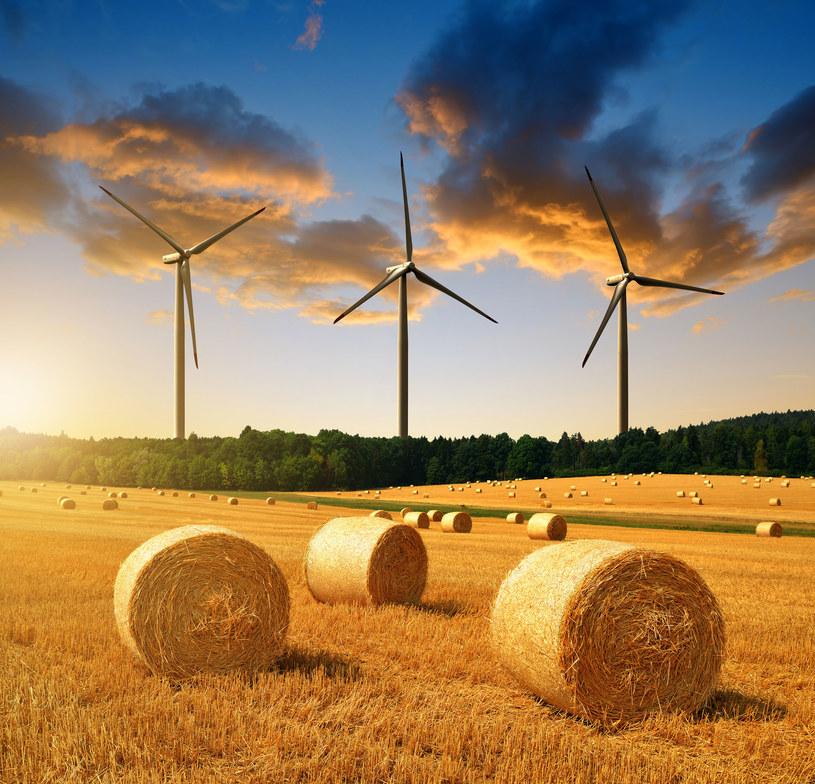 Lepiej budować wiatraki niż igrać z atomem /123RF/PICSEL