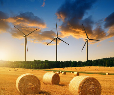 Lepiej budować wiatraki niż igrać z atomem