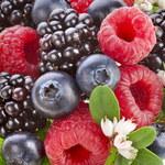 Leśne owoce: Co zawierają? Dlaczego warto je jeść?