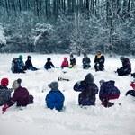 Leśne przedszkola: Tu dzieci 80 proc. czasu spędzają na świeżym powietrzu