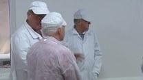 Leszek Miller zwiedza przetwórnię ryb