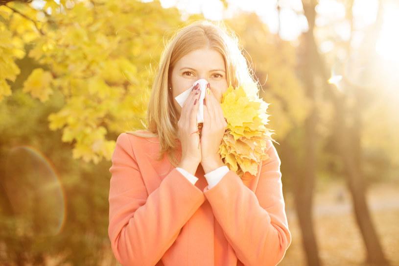 Letnie alergie mogą dawać o sobie znać również jesienią /123RF/PICSEL