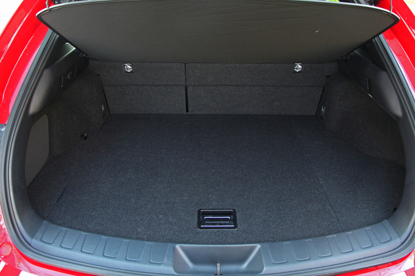 Lexus UX 250h /INTERIA.PL