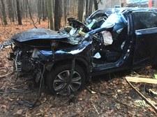Lexusem wpadł drzewa. Ściął je kilka metrów nad ziemią...
