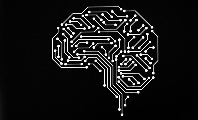 LG bardzo mocno stawia na sztuczną inteligencję /materiały prasowe