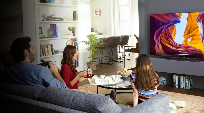 LG OLED ThinQ /materiały promocyjne