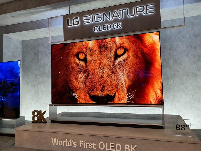 LG OLED TV 8K /INTERIA.PL