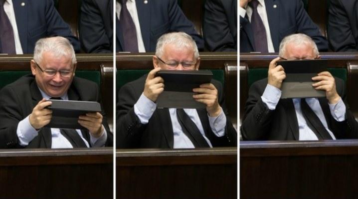 Lider PiS Jarosław Kaczyński /Krystian Maj /Agencja FORUM