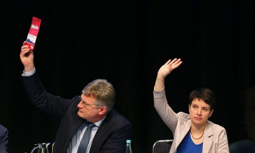 Liderzy ugrupowania: Jörg Meuthen i Frauke Petry /AFP