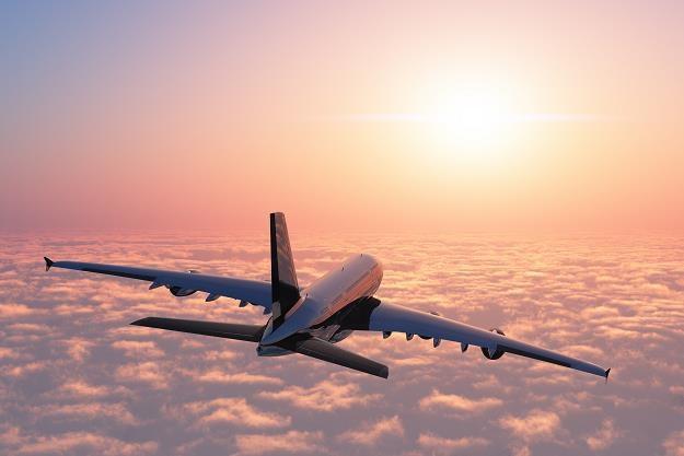 Linie lotnicze są zainteresowane współpracą przy planowaniu CPK /©123RF/PICSEL