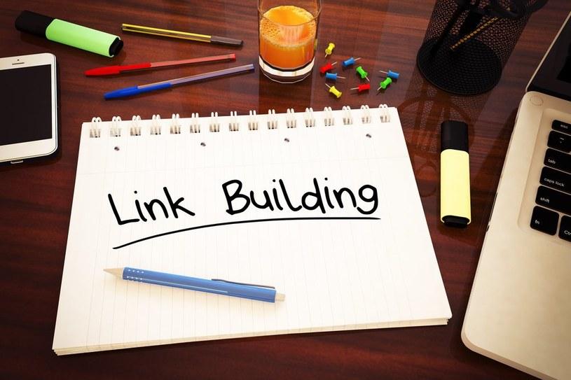 Link Building /materiały prasowe /materiały prasowe