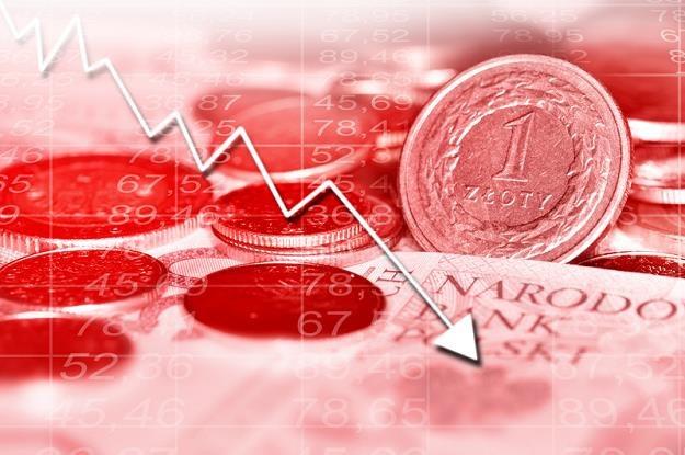 Lipiec rozpoczął się dla polskiej waluty fatalnie /© Panthermedia