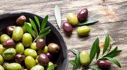 Liść oliwny – biblijny lek na bakterie i wirusy