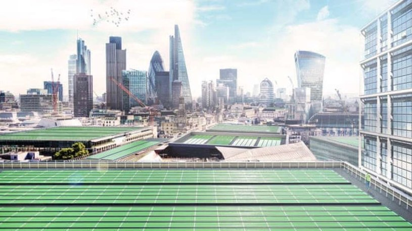 Liście biosolarne mogą wkrótce pojawić się w wielu europejskich miastach - na razie są w Londynie /materiały prasowe