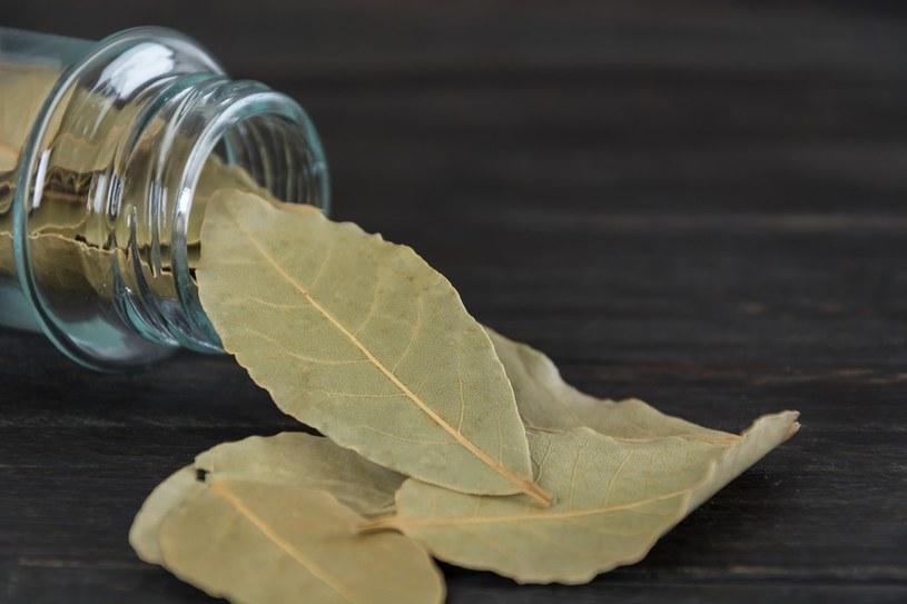 liście laurowe zastosowanie /© Photogenica