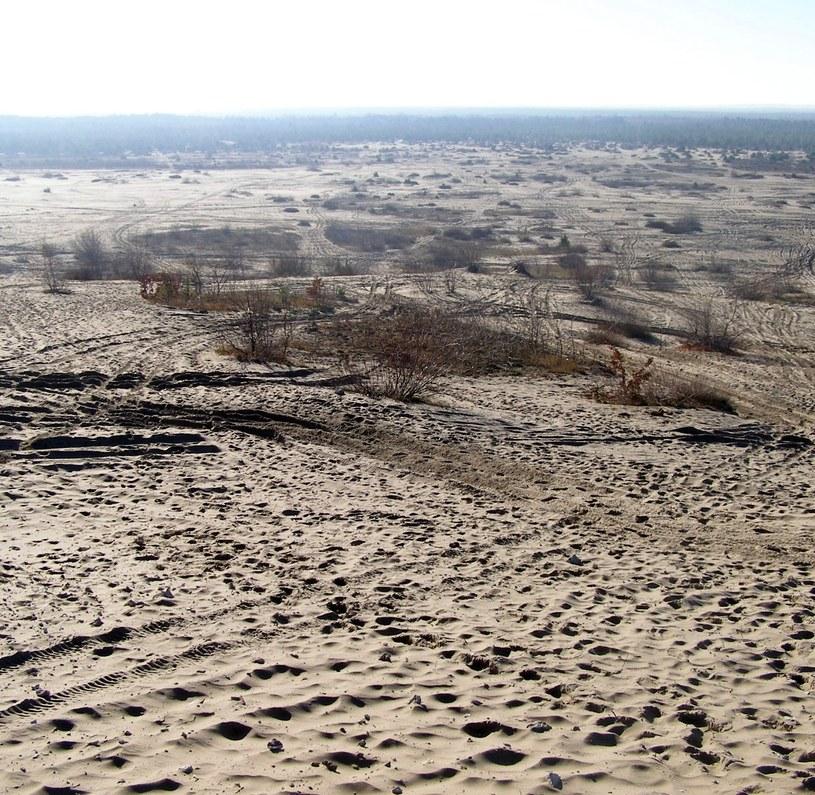 Listopad 2010 r. Widok ze wzgórza Dąbrówka koło Chechła na poligon Wojska Polskiego w północnej części pustyni /Odkrywca /Odkrywca