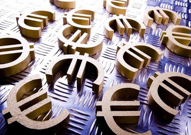Litwa chce wprowadzić euro /©123RF/PICSEL