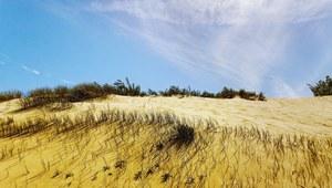 Litwa: Pejzaże Mierzei Kurońskiej