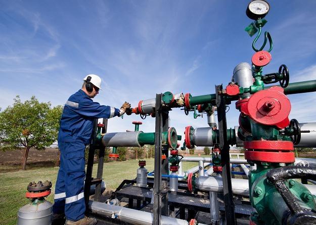Litwa w całości kupuje gaz od Gazpromu /©123RF/PICSEL
