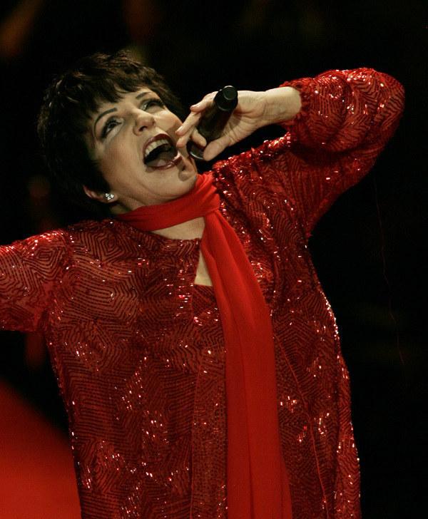 Liza Minnelli na scenie (2008) /AFP