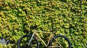 Loca Bikes Raw Gold - rower szyty na miarę