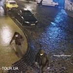 Lód na ulicach, szklanka na chodnikach. Nagranie z Kijowa hitem internetu