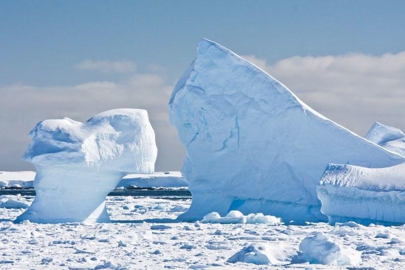 Lodowce Antarktyki topnieją w niepokojącym tempie /123RF/PICSEL