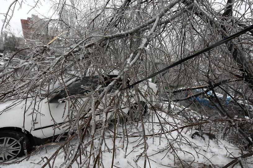 Lodowy deszcz sparaliżował Władywostok i większość Kraju Nadmorskiego /Pavel Korolyov /AFP