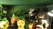 Łódź: W czwartek otwarcie muzeum animacji