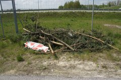 Łódzkie: Policjanci zapobiegli kibolskiej napaści