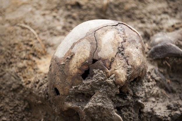 Lokalny historyk Bogdan Szykuła wraz z władzami gminnymi doprowadził do ekshumacji kilku osób siedem lat temu, zdjęcie ilustracyjne /Michał Kość /Reporter