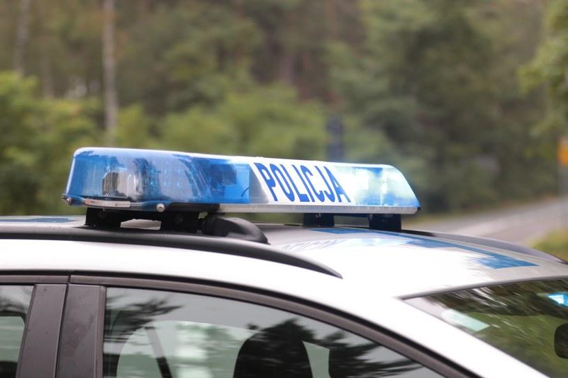 Łowca pedofilów zatrzymany za posiadanie dziecięcej pornografii i molestowanie nieletnich (zdjęcie ilustracyjne) /Fot. Piotr Jedzura /Reporter