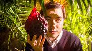 """""""Łowcy owoców"""": Smaczna filmowa podróż"""