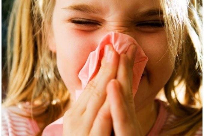 Lubczyk działanie lecznicze /© Photogenica