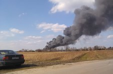 Lubelskie: Wielki pożar szklarni, kłęby dymu nad okolicą
