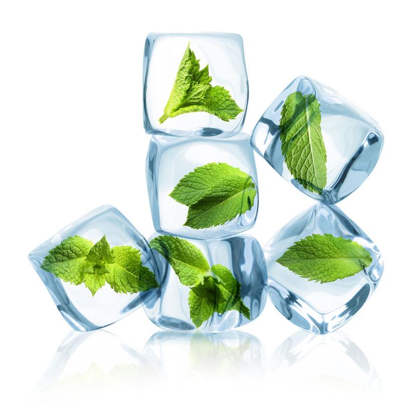 Lubisz świeże zioła zimą? Można je latem zamrozić /123RF/PICSEL
